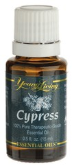 Cypress Essential Oil - Zypresse - 15 ml